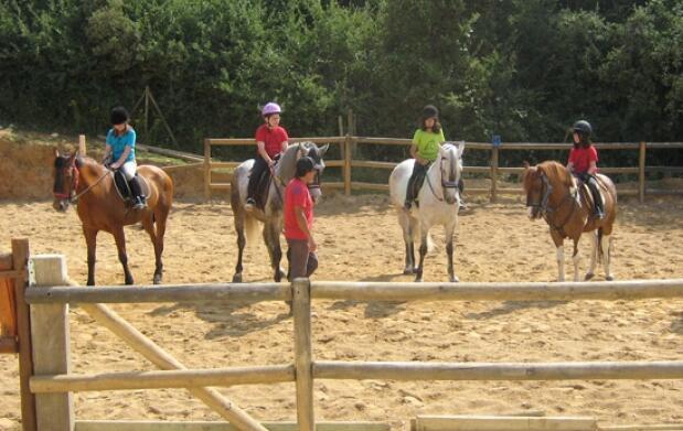 Campamento de verano: Equitación e inglés