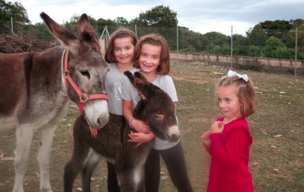 Ruta en burro para familias con niños