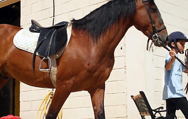 Experiencia a caballo, Valle Valdegovía