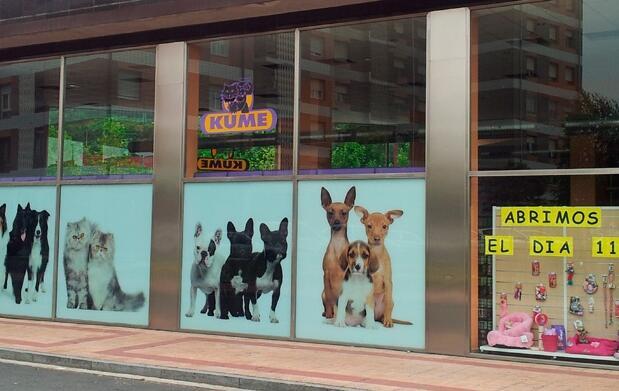 ¡3,5 kg de EUKANUBA para tu perro 5€!