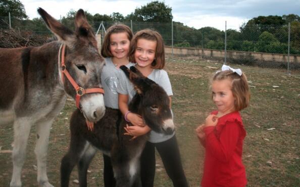 Aventura para niños en La Granja de Vitoria