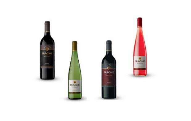 Cata de vinos+maridaje+menú+botella