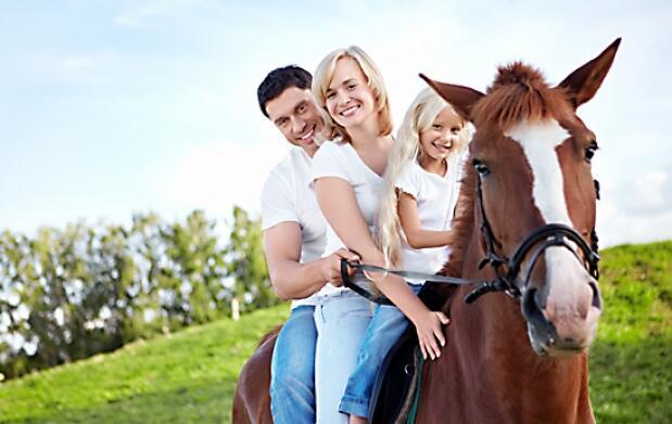 Paseo o clase de iniciación a caballo