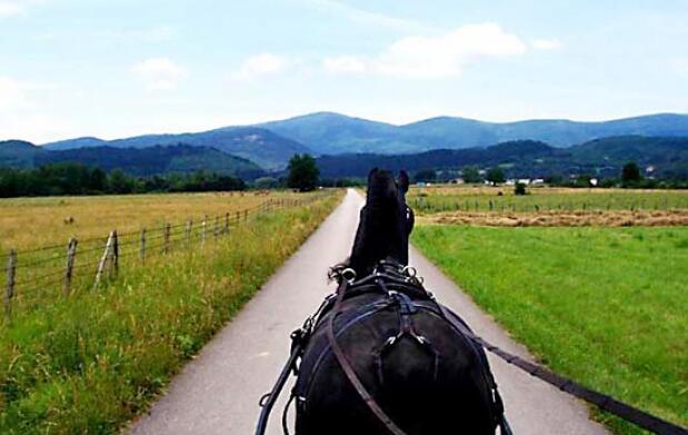 Paseo a caballo en el Valle de Mena