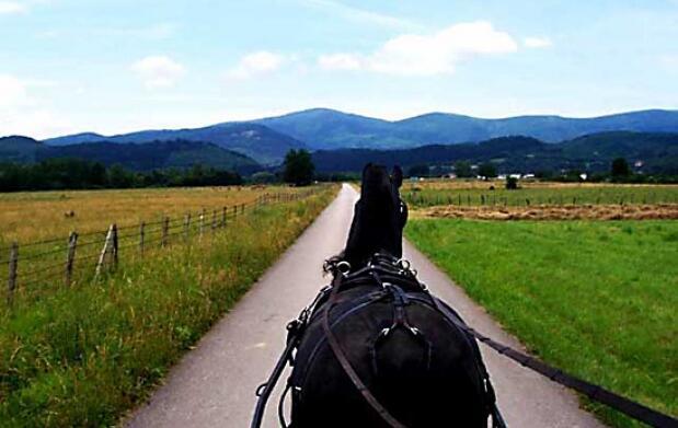 Primavera a caballo en el Valle de Mena