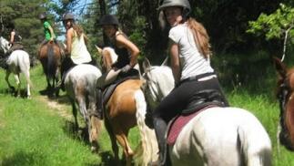 Ruta a caballo por Valdegovía (más de 1h)