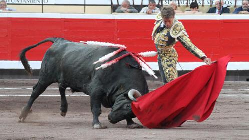 Toros con Finito de Córdoba, Manuel Escribano, Juan Leal…