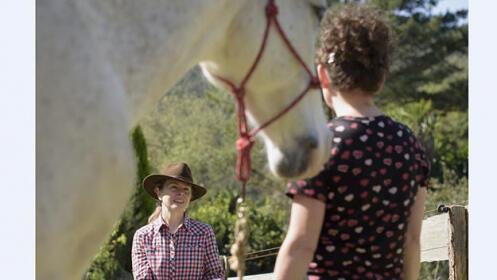 Coaching personal con caballos